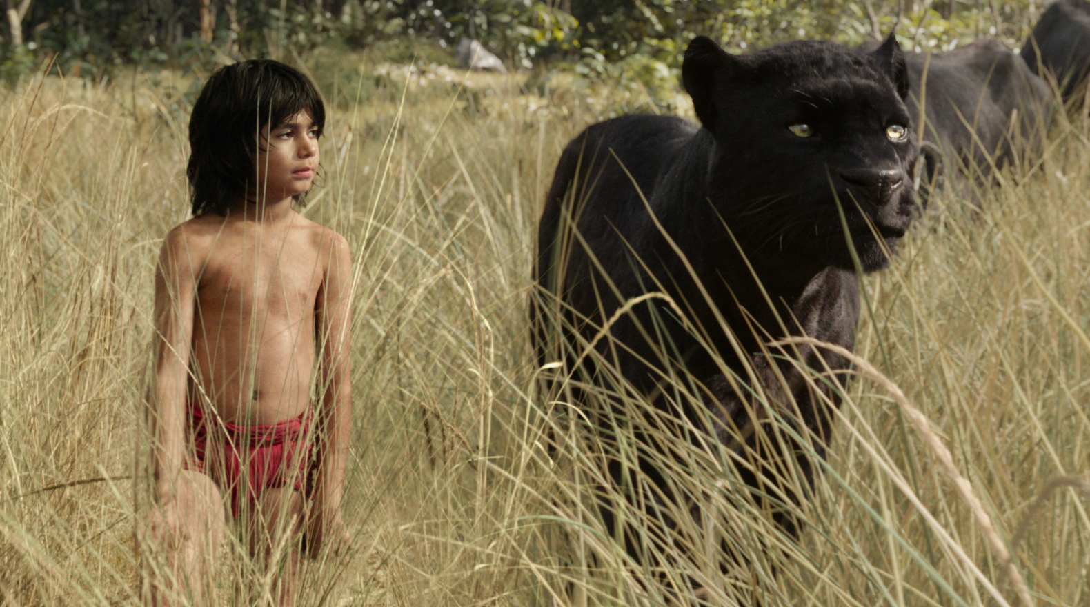 de_the-jungle-book_gi_1095_34d633bd